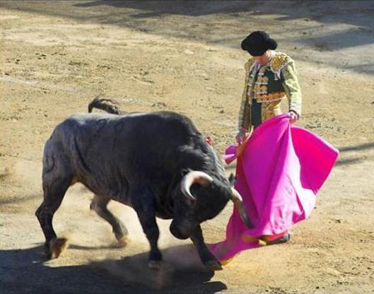 bikaviadal bikafuttatás - Corrida de Céret 2014
